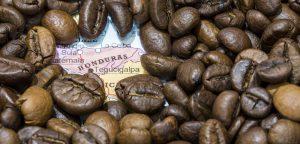 coffee from Honduras